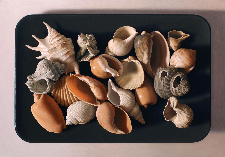 Seashells – Antonio Cazorla